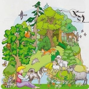 Восприятие дошкольником окружающего мира